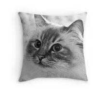 Kitty... Throw Pillow