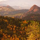 Fall in the Colorado Rockies (1) by dfrahm