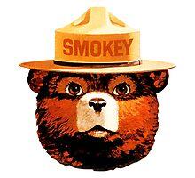 Smokey The Bear Photographic Print
