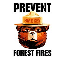 Smokey The Bear Prevent Forest Fires Photographic Print