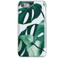 Monstera #redbubble #artprints iPhone Case/Skin