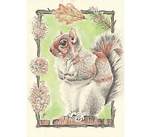 Autumn Squirrel Photographic Print