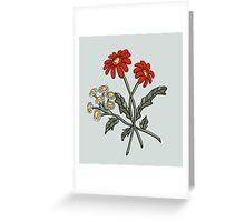Red and White Daisies Greeting Card