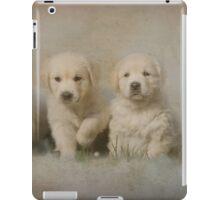 Triple Treat iPad Case/Skin