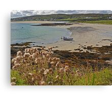 On the Island Canvas Print