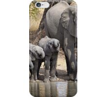 Elephant Mom and Babies iPhone Case/Skin