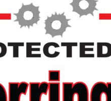 Derringer Protected by Derringer Shield Sticker