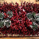 Merry Christmas 16 by annalisa bianchetti