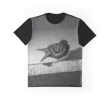 Columba Livia Domestica - Grand Central Station's Pigeon | New York City, New York Graphic T-Shirt