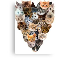 For the Love of Cats Canvas Print