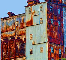 There's a rusty building in town by JoAnnFineArt