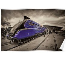 Mallard at Shildon  Poster