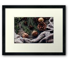 Cozy winter photography Christmas tree present Framed Print