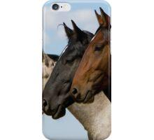 Three Stallions iPhone Case/Skin