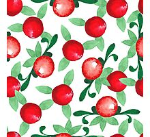 Watercolor seamless pattern. Cranberries. Photographic Print