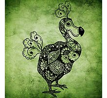 Dodo Green Photographic Print