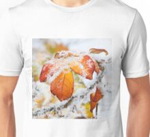 Rose bush frozen autumn color leaves Unisex T-Shirt