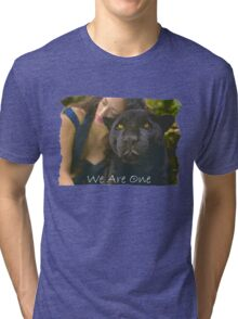 WE ARE ONE (Lady and the Black Leopard - Togetherness) Tri-blend T-Shirt