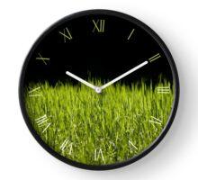 Green fresh sunny grass leaves Clock