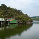 Glenelg River, Nelson by SusanAdey