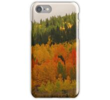 Fall in the Colorado Rockies (2) iPhone Case/Skin