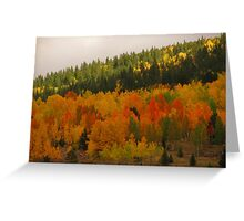Fall in the Colorado Rockies (2) Greeting Card