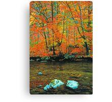 LITTLE RIVER,AUTUMN Canvas Print