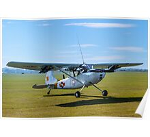 Cessna O-1E Bird Dog 24550/ GP G-PDOG Poster