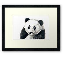 Panda bear Framed Print