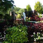 Lewis Ginter Botanical Garden by ctheworld