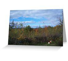 Corgi in Autumn Foliage Greeting Card