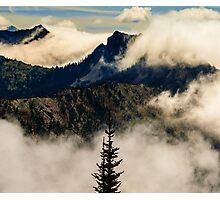 Mount Rainier surroundings Photographic Print