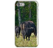 Cows 3 iPhone Case/Skin