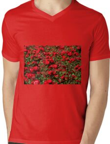 Red roses bunches grow Mens V-Neck T-Shirt