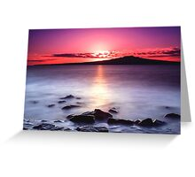 Magenta Gazes On Silver Mist Greeting Card