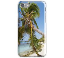 Morrocoy National park, a paradise with coconut trees, white sand and deep blue sky in Venezuela iPhone Case/Skin