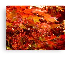 Leaves of Red   ^ Canvas Print