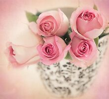 Four pink roses by carolynrauh
