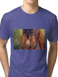 Squirrel  Tri-blend T-Shirt