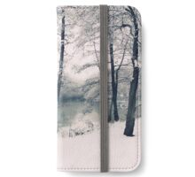 Snow Pond iPhone Wallet/Case/Skin