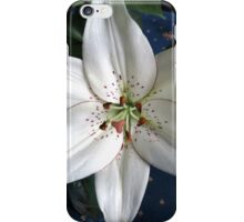 Pure White Lily  iPhone Case/Skin