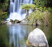 Rainbow Springs New Zealand by candysfamily