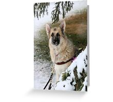 Happy puppy Greeting Card