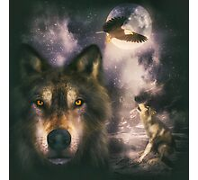 Night Wolves 2 Photographic Print