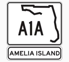 A1A - Amelia Island, Florida - Sun and Fun! by IntWanderer