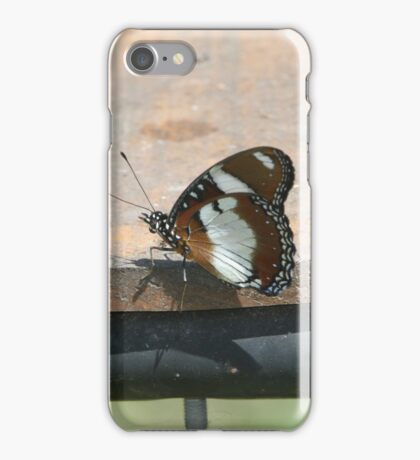 Common diadem iPhone Case/Skin