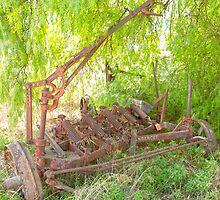 Hidden under the peppercorn trees ... the old discs...plough by mitpjenkeating