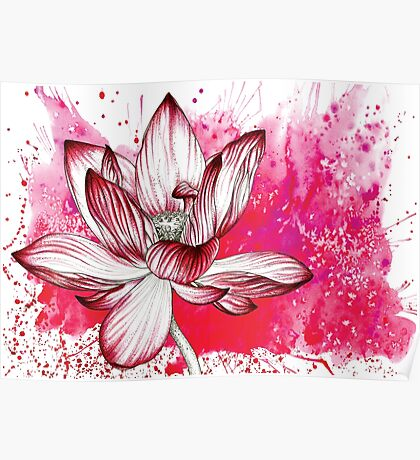 Red Lotus Flower Illustration Watercolour Pencil Love Nature Poster