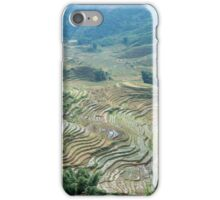 Cat Cat Vietnam Rice fields iPhone Case/Skin