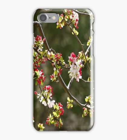 1000 Tiny Flowers, it's Spring! iPhone Case/Skin